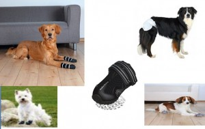Why-you-need-to-buy-dog-boots-and-socks How-to-choose-dog-boots-store